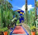 Gardens of Majorelle